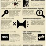 Infografikas: kuo skiriasi SEO ir normalūs straipsniai